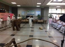신나는 예술여행(안성 성요셉병원 9.19)